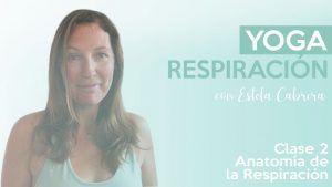 Anatomia de la respiración