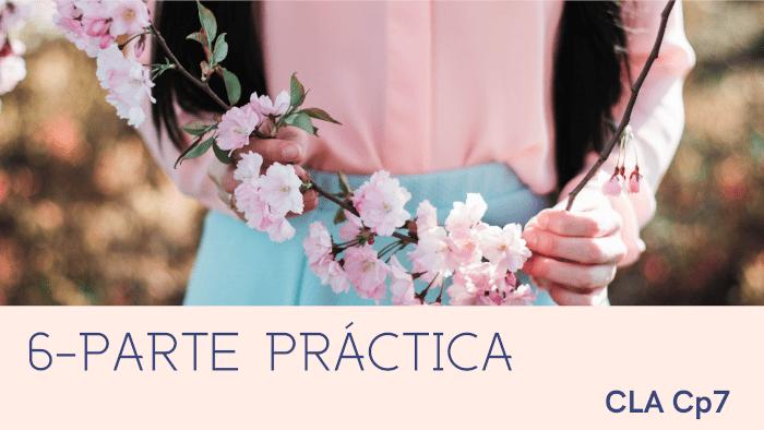 6- Parte Practica cla.7